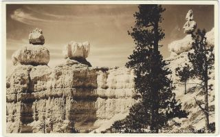 View from the Horse Trail - Bryce Canyon National Park [Real Photo Postcard]. Utah Parks Company